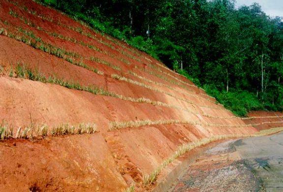 Control de erosión