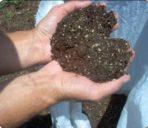Saco de abono orgánico